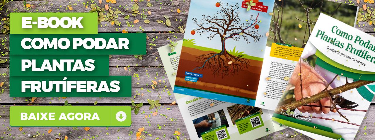 E-book - Como podar plantas frutíferas.